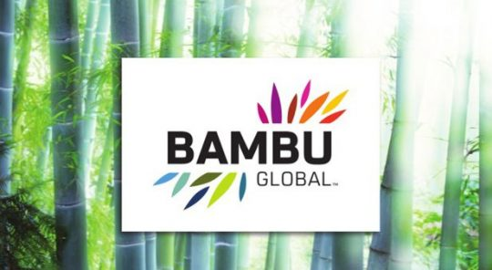 Bambu Global Website